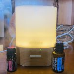 Passion & Peppermint Diffuser Blend