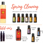 Spring Cleaning Kit