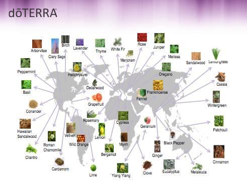 dōTERRA Essential Oil Sourcing Map